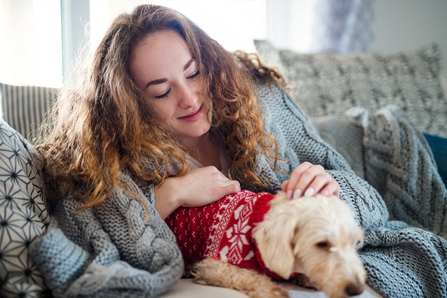 Lake Minnetonka Pet Sitters offers peace of mind